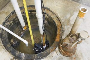 Tenderness, Romance, and a New Sump Pump